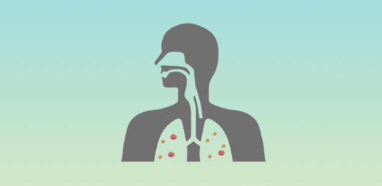 Pollution and the respiratory system