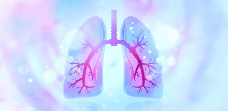 Human lungs on scientific background